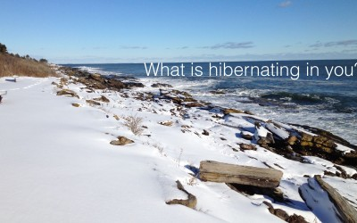 What is hibernating within you?