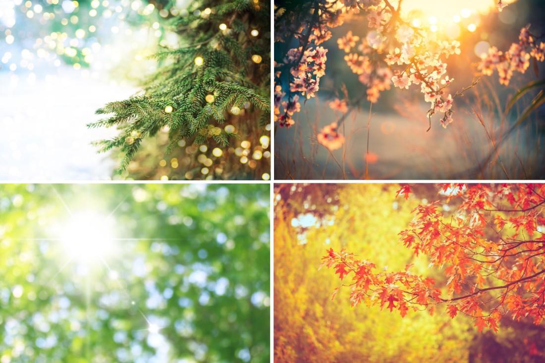 Spring Equinox Energy Attunement | March 13 - 31